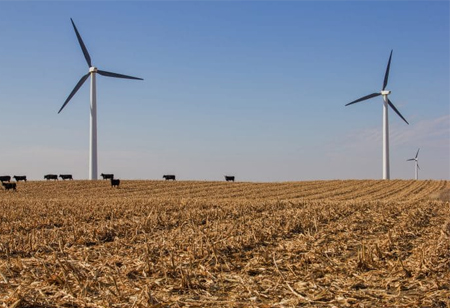 Things to Know About Onshore and Offshore Wind Farms